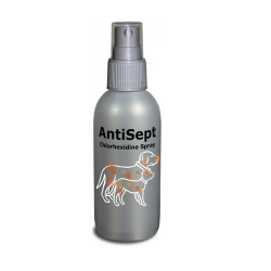 Spray Disinfettante Antisept per Cane e Gatto (6)