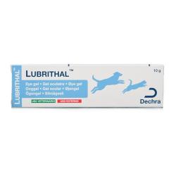 Dechra-Gel Oculare Lubrithal per Cane e Gatto (1)