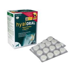 farmadiet-Hyaloral Razze Grande (1)