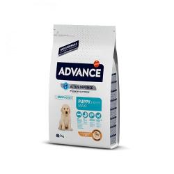 Affinity Advance-Cucciolo Razze Grande (1)