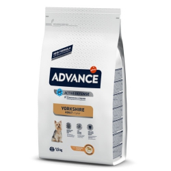 Affinity Advance-Yorkshire Terrier Adulto (1)