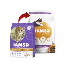 Iams-Kitten (1)