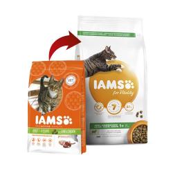 Iams-Adulto Proactive Agnello (1)