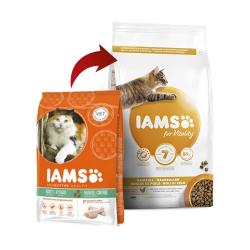Iams-Adulto Hairball (1)