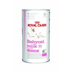 Royal Canin-Latte per Gattino (1)