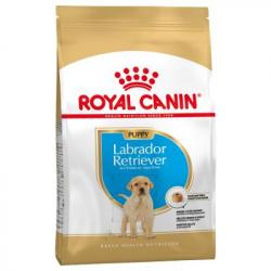 Royal Canin-Labrador Retriever Cucciolo (1)