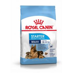 Royal Canin-Maxi Starter Gestazione/Lattazione (1)