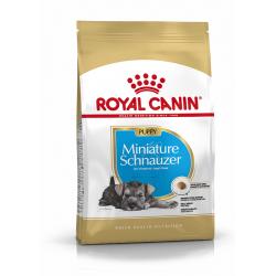 Royal Canin-Schnauzer Miniature Cucciolo (1)