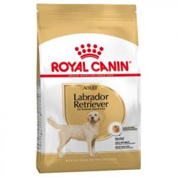 Royal Canin-Labrador Retriever Adulto (1)