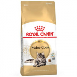 Royal Canin-Maine Coon Adulto (1)