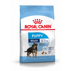 Royal Canin-Maxi Junior Cuccioli Razze Grande (1)