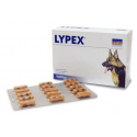 vetplus-Lypex per Cane e Gatto (1)